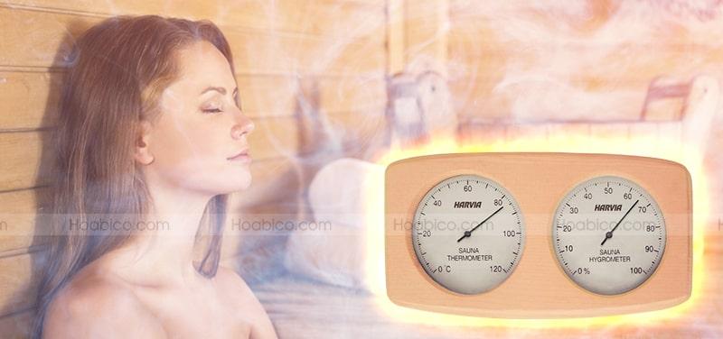 Thông số sản phẩm nhiệt ẩm kế gỗ Harvia