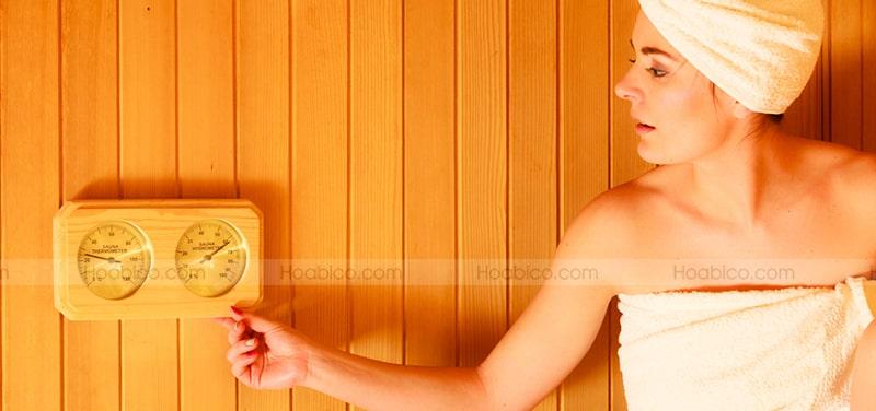 Đặc điểm sản phẩm nhiệt ẩm kế gỗ Harvia